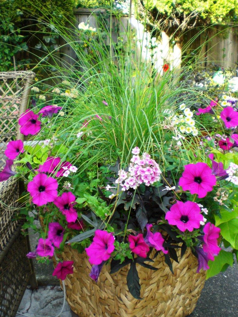 Beautiful mixed planter for Beautiful planters