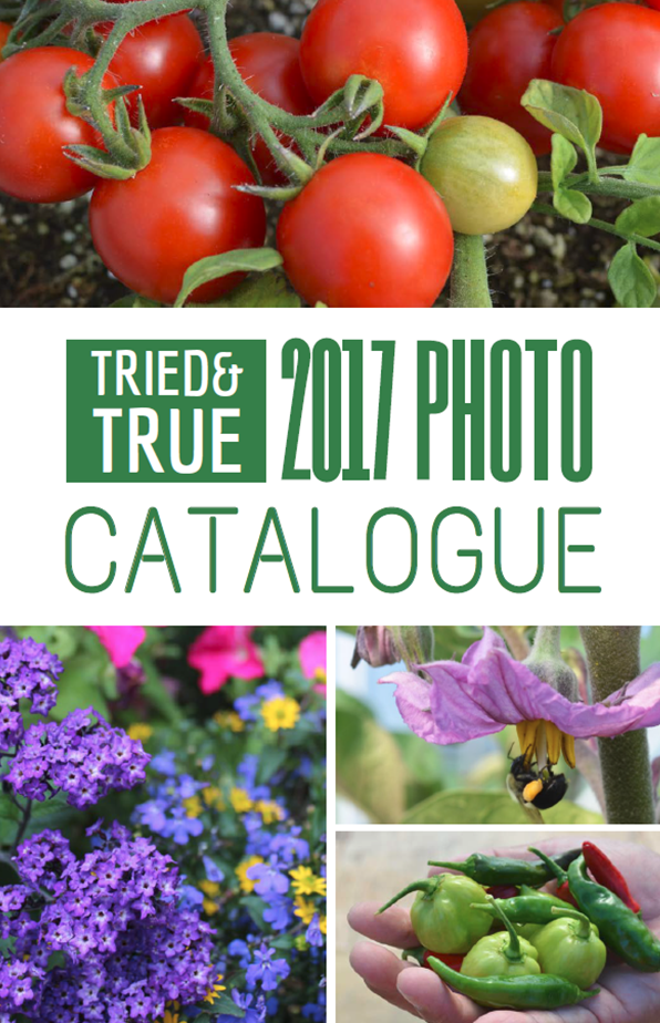 2017 Tried & True Photo Catalogue