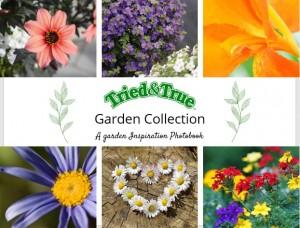 2021 Tried & True Garden Collection Inspiration Photobook
