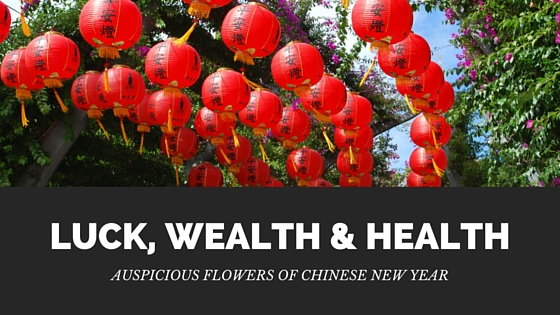 Auspicious Flowers for Chinese New Year