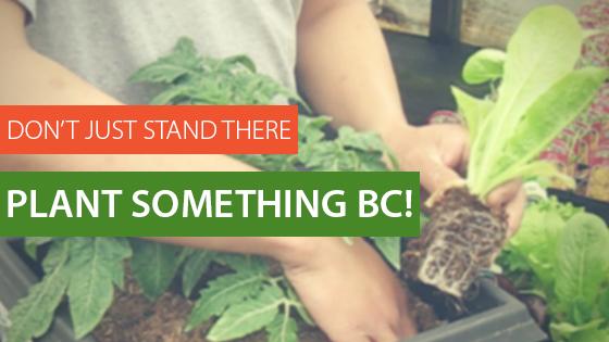 Plant Something BC