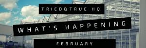 T&T HQ February