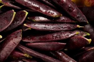 Taste of the Season Royal Snap II Peas