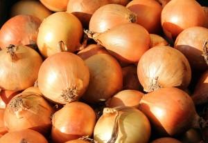 onion-3127137_1920