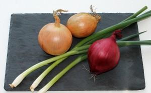 onion-625269_1920
