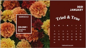 2021 Tried & True Garden Collection Calendar